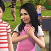 Sims 3 Cheats für PC,