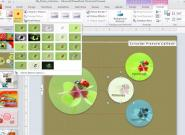 Microsoft Office 2010: Die meisten