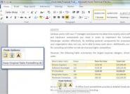 Microsoft Word 2010 mit neuer