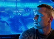Rekord: 3D Blu-ray von Avatar