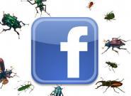 Facebook News-Feeds sind massenhaft mit