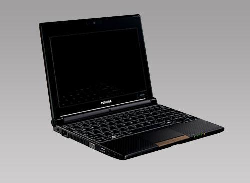 Toshiba NB500-108