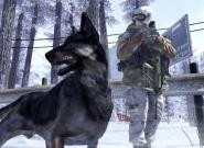 Call of Duty 8: Entwicklungsschmiede