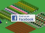 Facebook: Wie kann man sich