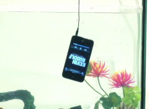 iPhone 4S im Wasser