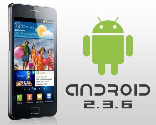 Samsung galaxy S2 mit ANdroid 2.3.6 Logo